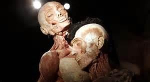 Preparaat menselijk lichaam Body Worlds